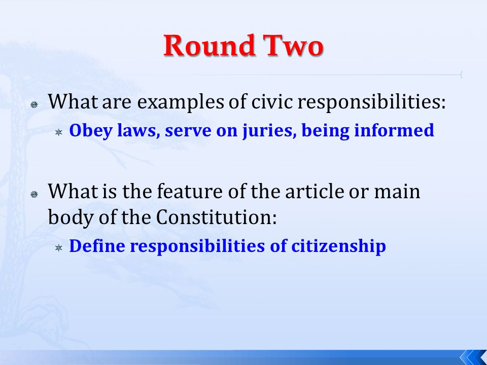 Rights And Responsibilities Of Citizenship Ppt Download