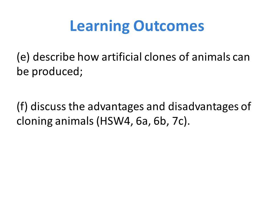 disadvantages of cloning animals