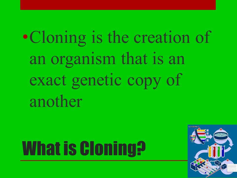 gene cloning powerpoint presentation