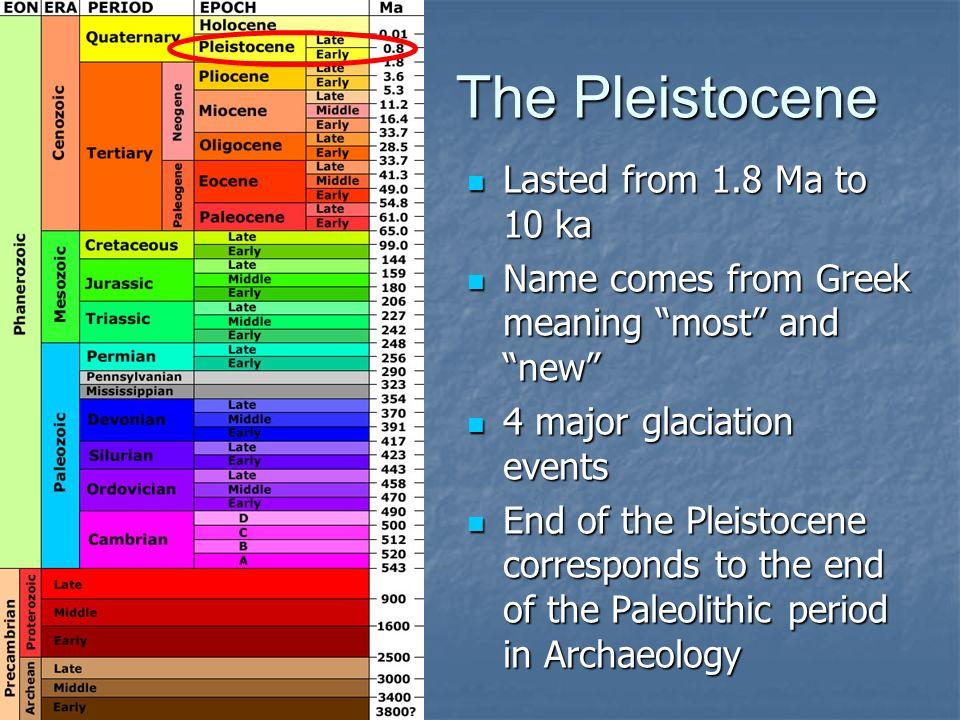 Pleistocene Mammals of North America
