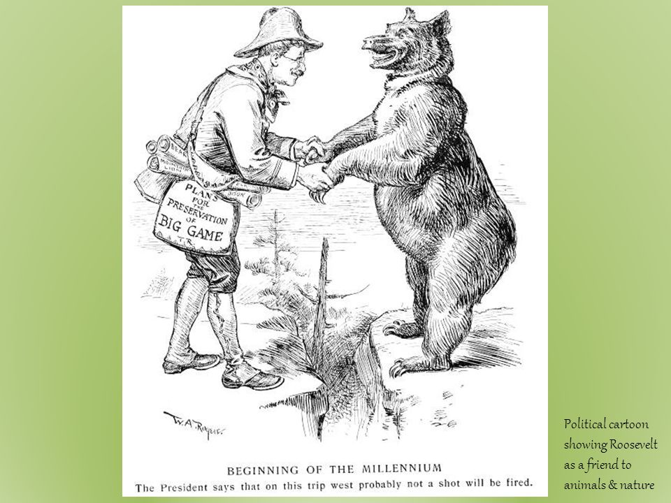 teddy roosevelt square deal definition