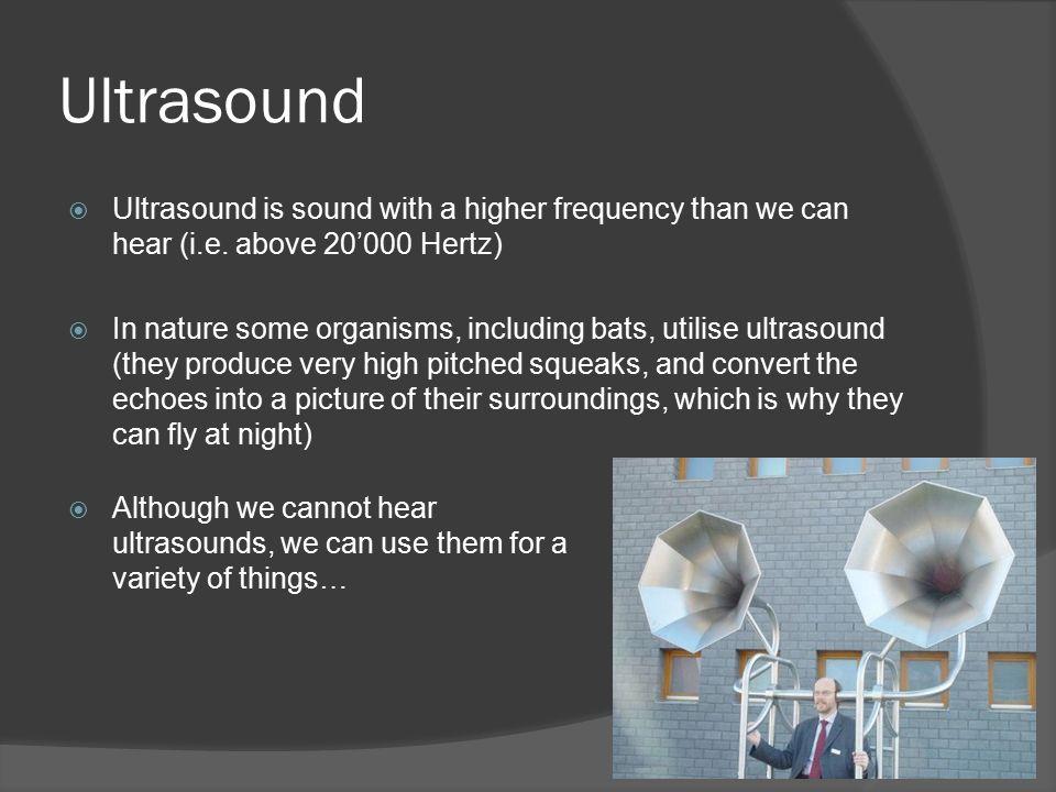 can we hear ultrasound