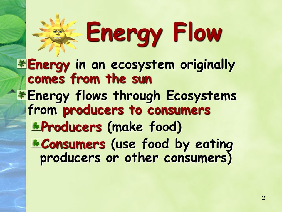 Energy flow in an ecosystem ppt download.