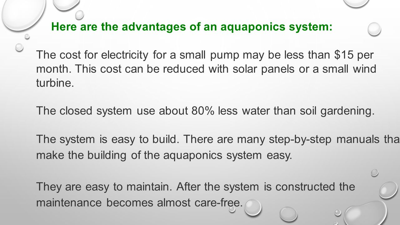 Aquaponics is a way to grow food: - ppt video online download