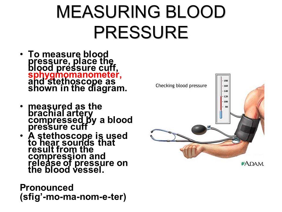 week 12 arterial blood pressure  u0026 heart sounds