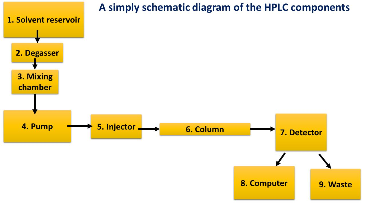 A simply schematic diagram of the HPLC components