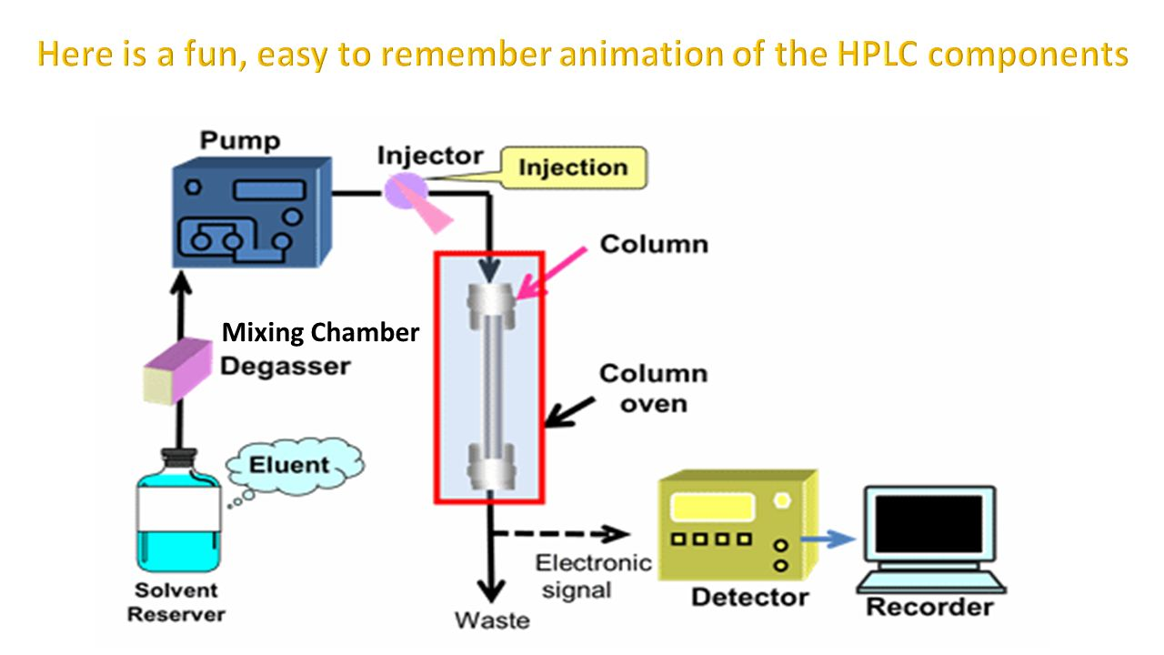 Here is a fun, easy to remember animation of the HPLC components