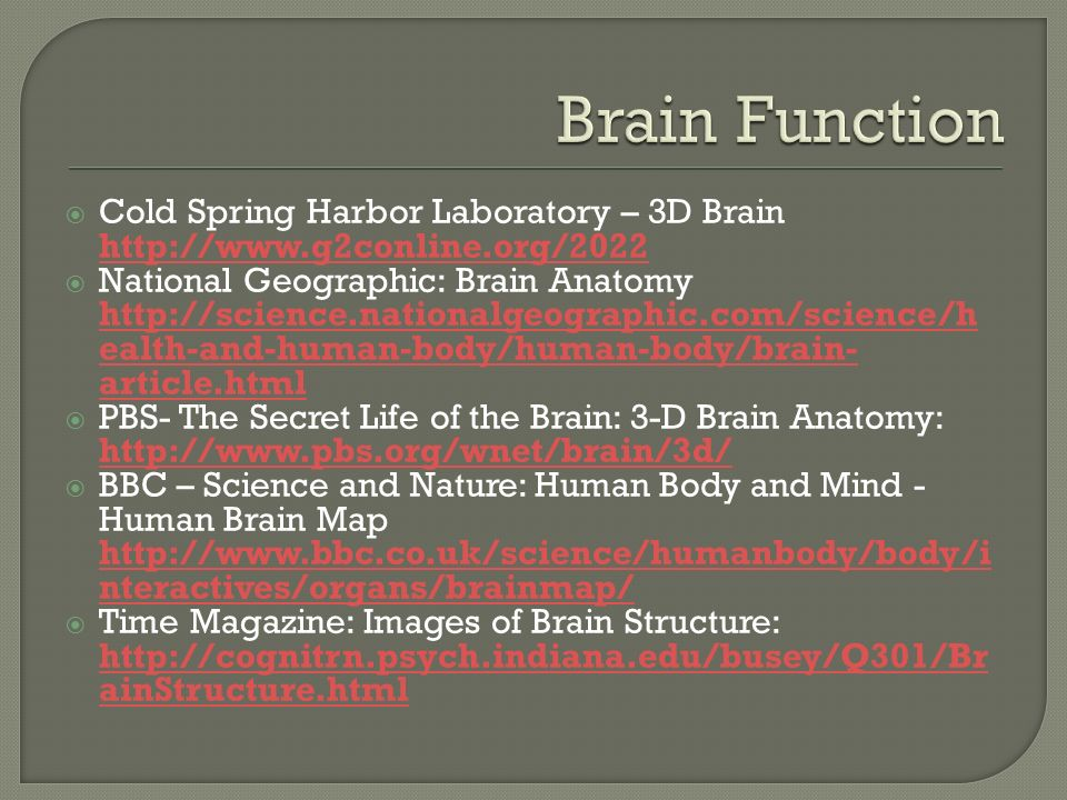 The Brain and the Nervous System - ppt video online download