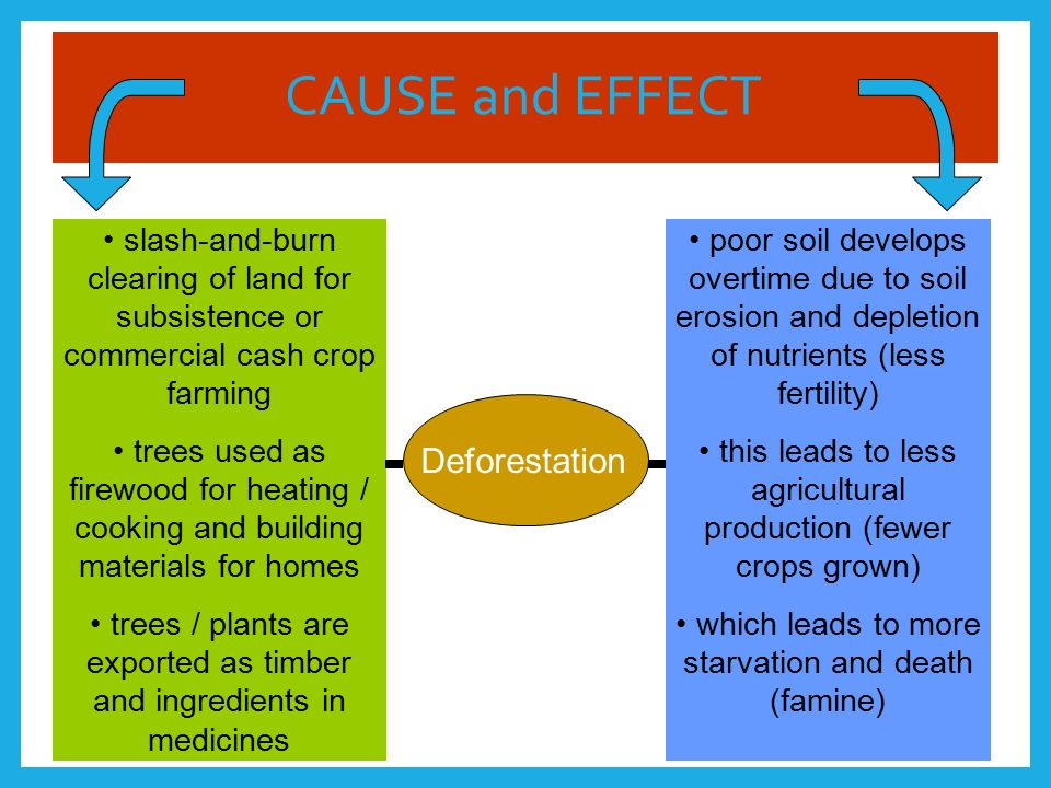 famine causes and effects