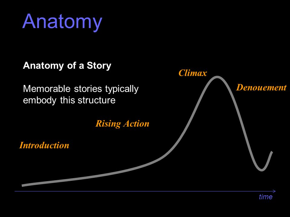 Anatomy Anatomy Of An Interview Ppt Video Online Download