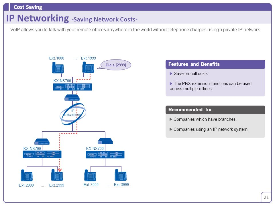 IP Networking -Saving Network Costs-
