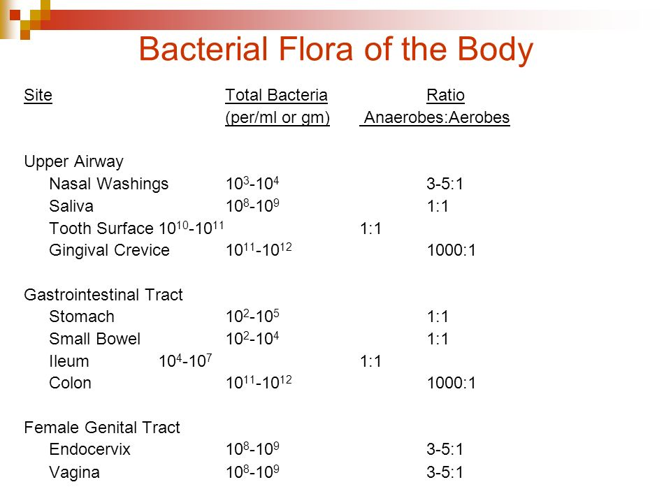 Bacterial Flora of the Body