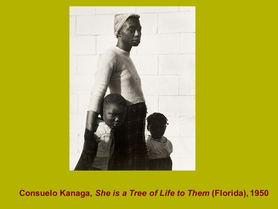 Consuelo Kanaga, She is a Tree of Life to Them (Florida), 1950