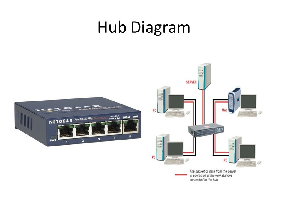 Network Hub Diagram - Free Vehicle Wiring Diagrams •
