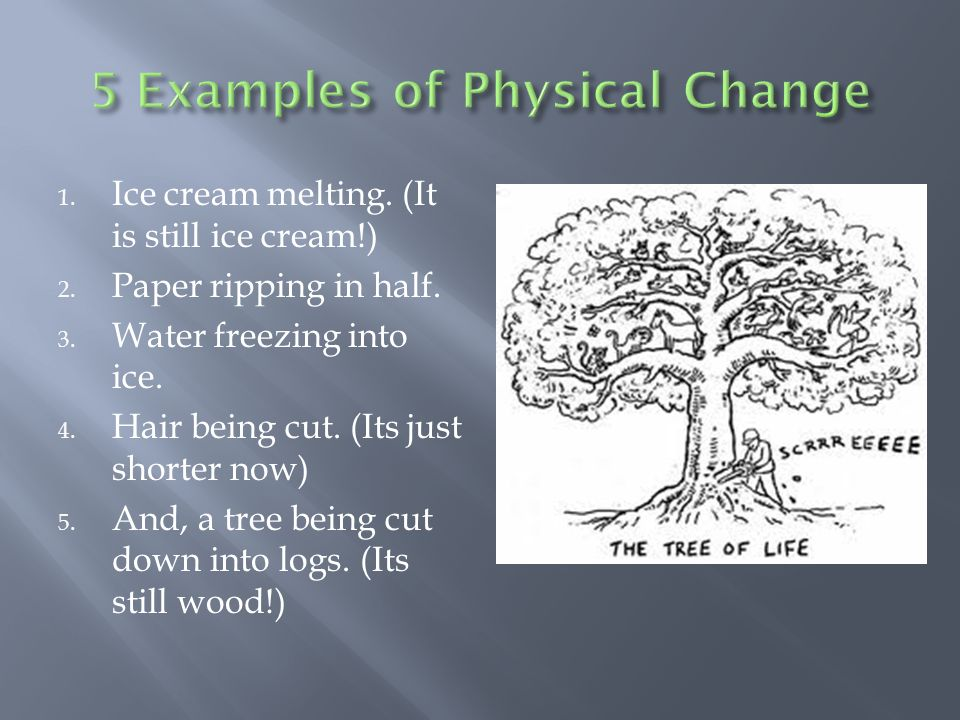 Change Of The Physical And Chemical Varieties Ppt Video Online