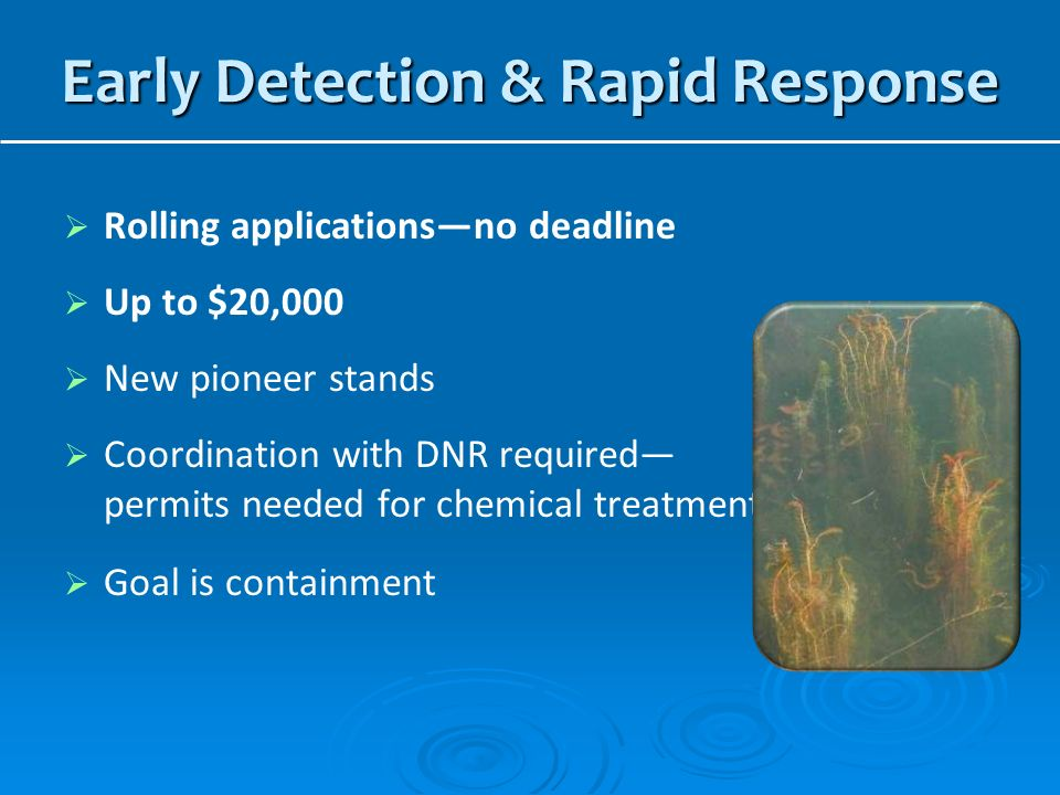 Early Detection & Rapid Response