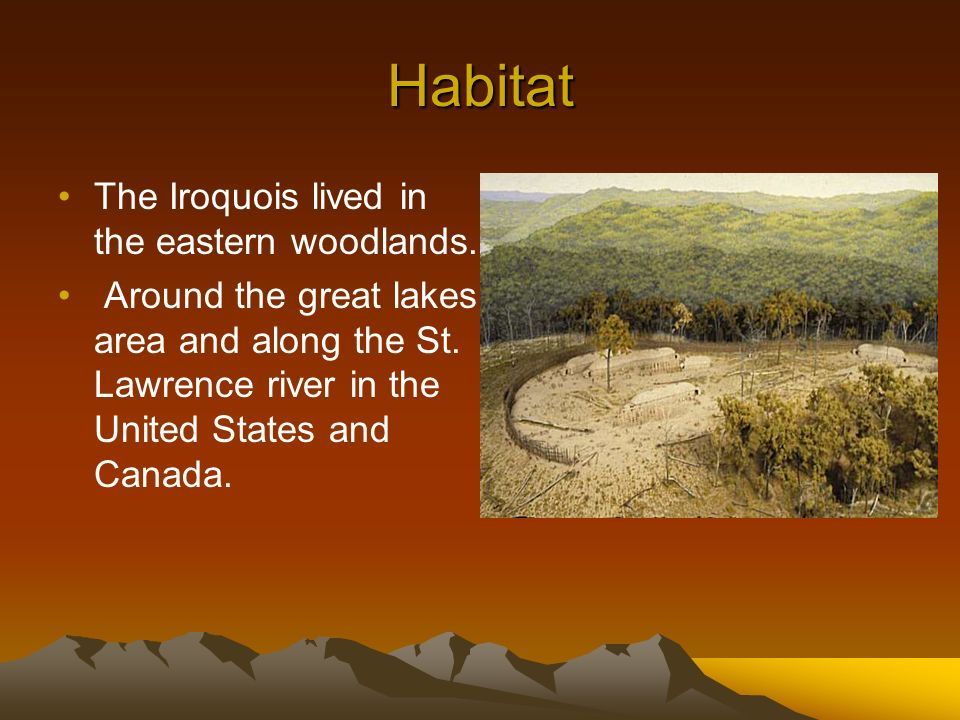 iroquois of the eastern woodlands