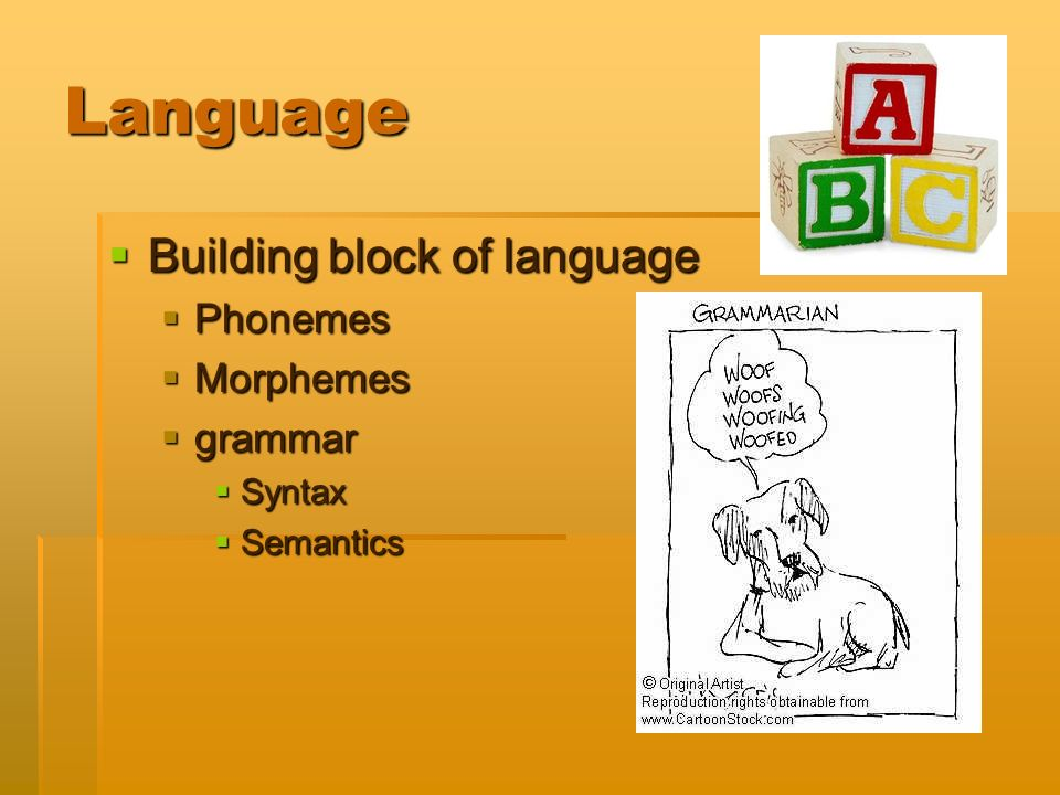 building blocks of language