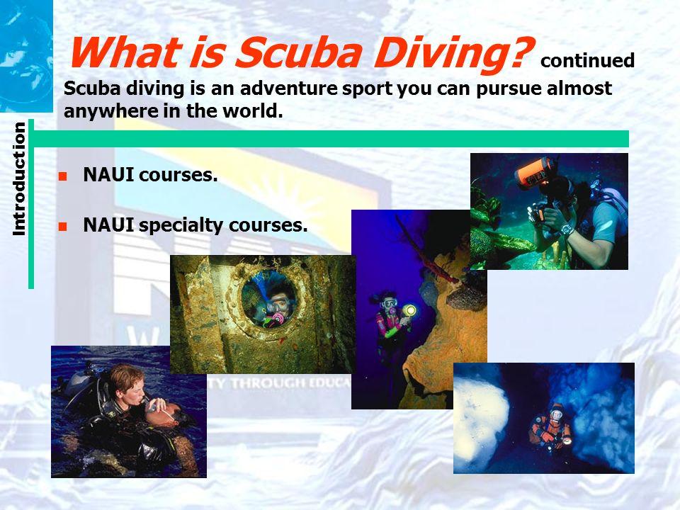 Unit 1 The Naui Scuba Diver Course Ppt Video Online Download