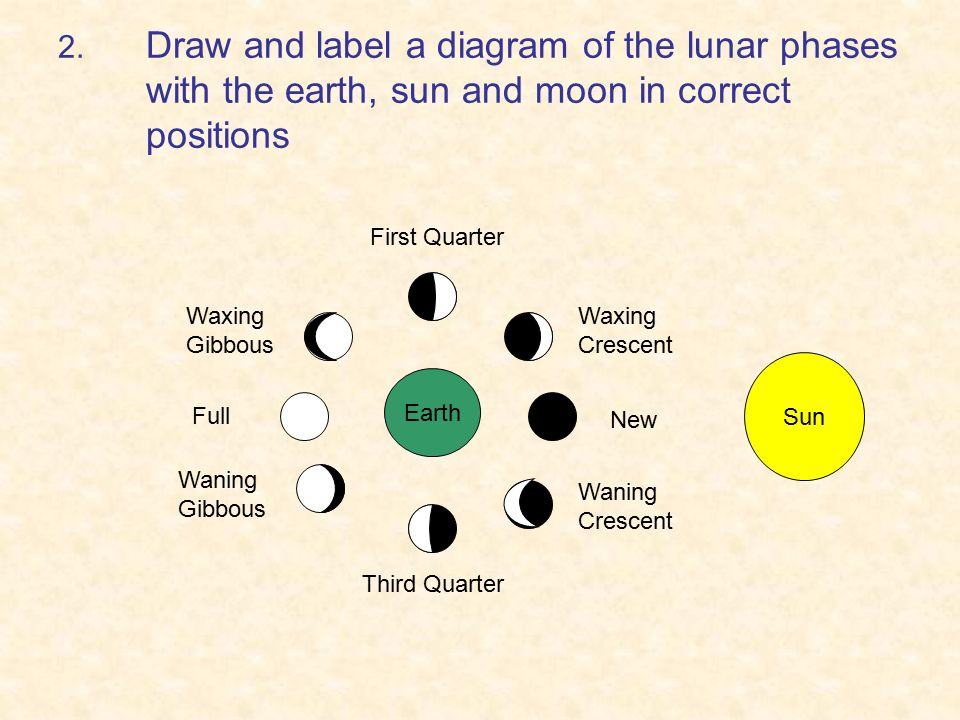 Cycles Moon Phases Tides Seasons Ppt Video Online Download