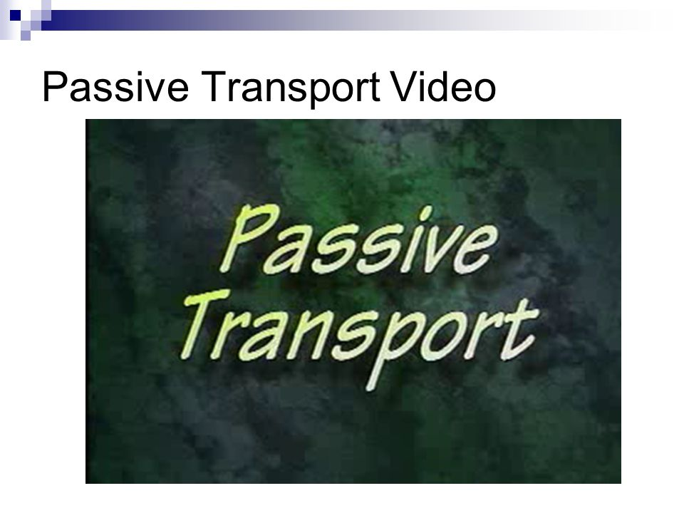 Passive Transport Video