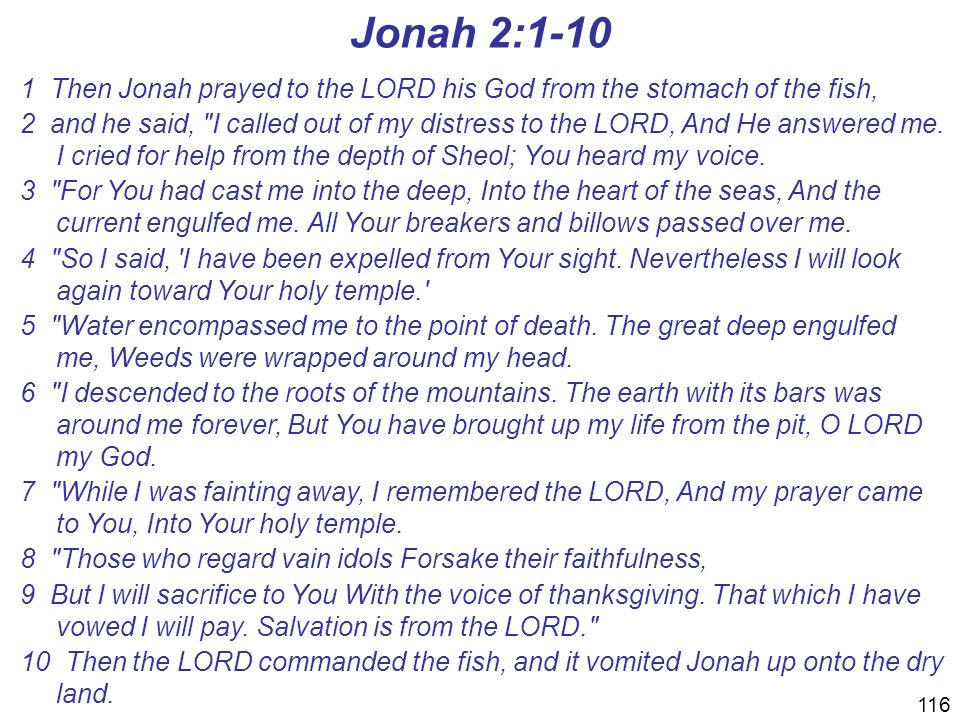 Jonah 2: Then Jonah prayed to the LORD his God from the stomach of the fish,