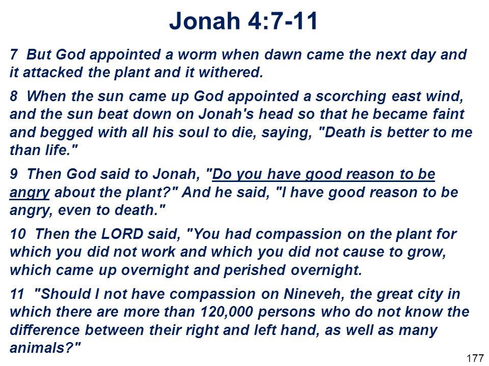 Jonah 4: But God appointed a worm when dawn came the next day and it attacked the plant and it withered.