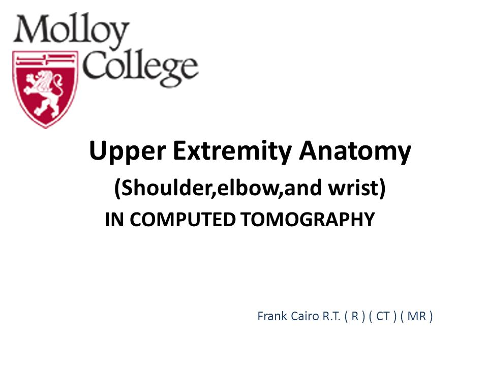 Upper Extremity Anatomy (Shoulder,elbow,and wrist) - ppt download