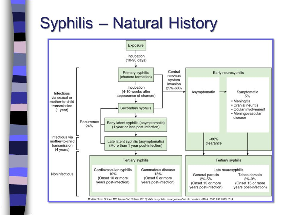 Hiv Natural History Ppt