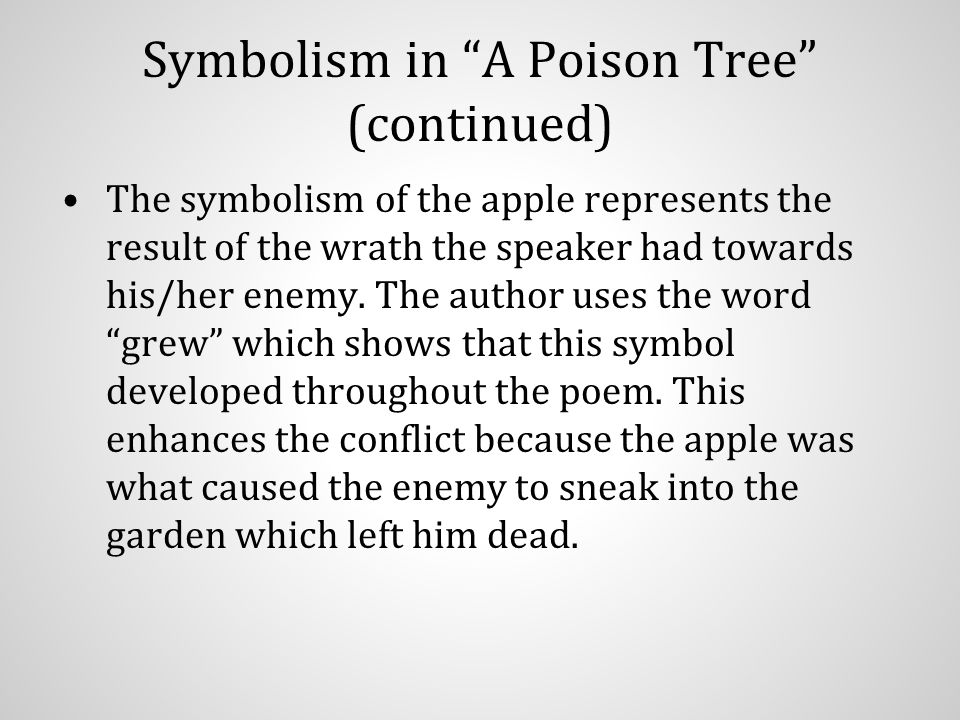 Symbolism Of A Tree Choice Image Meaning Of This Symbol