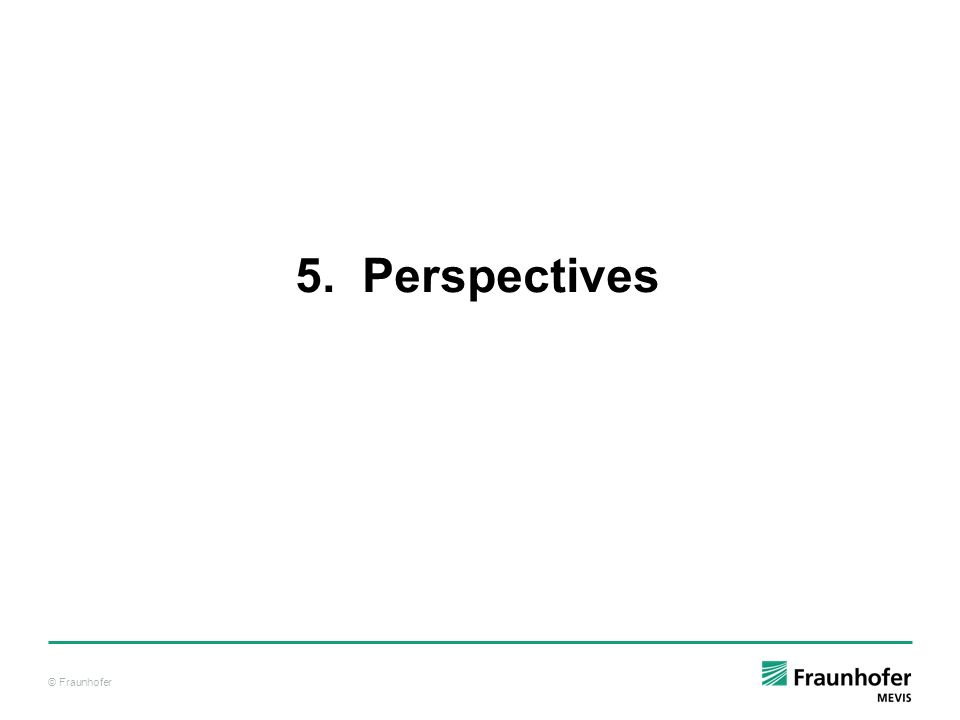 5. Perspectives