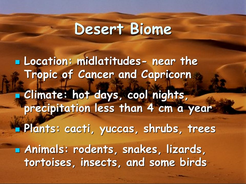 what is the climate like in the desert biome