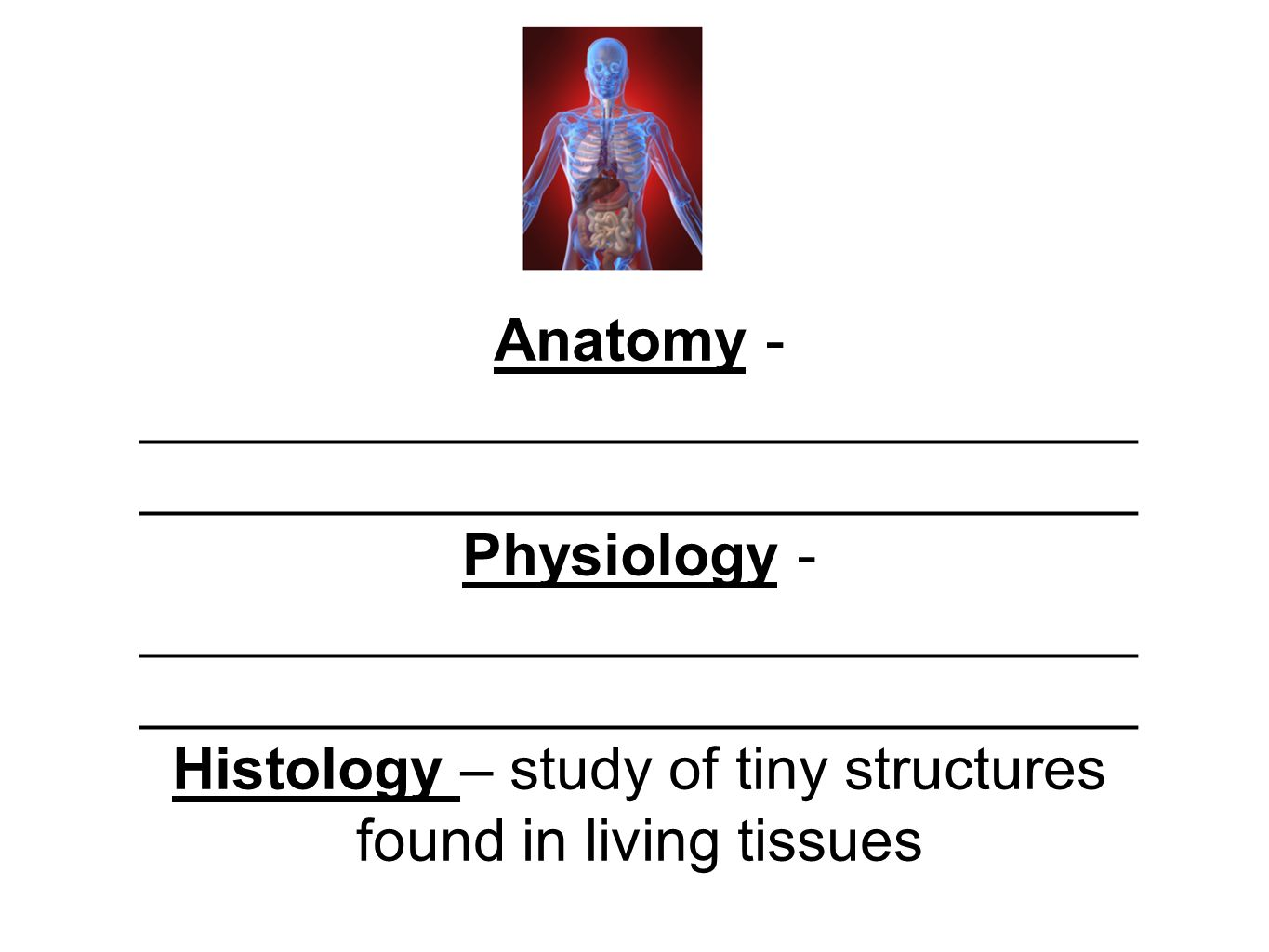 Anatomy - Physiology - Histology. - ppt download