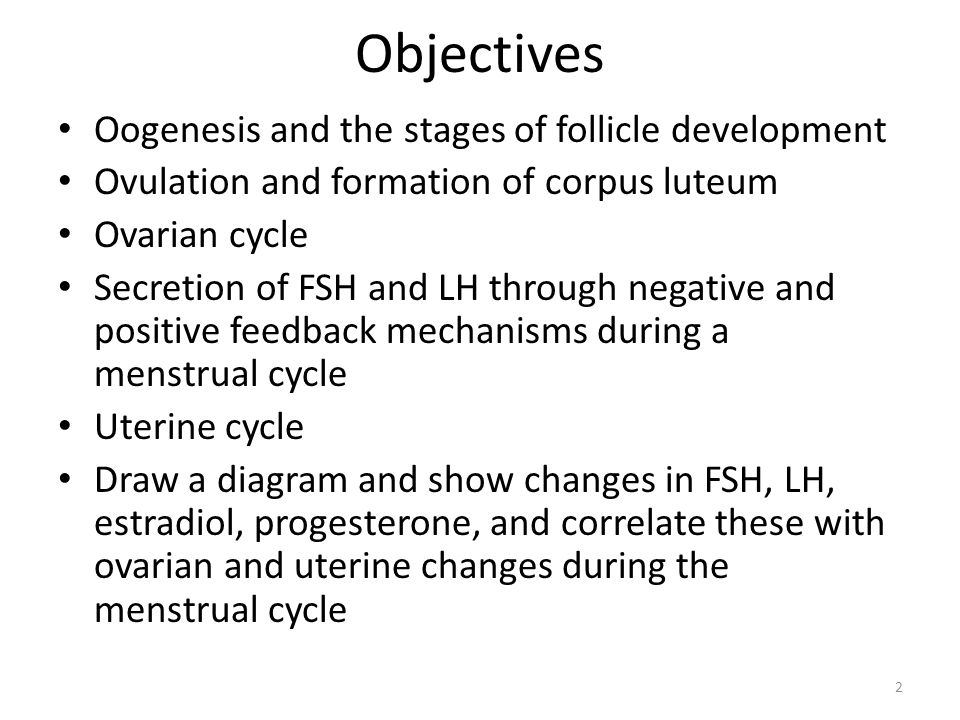 oogenesis and ovarian cycle Study the adverse effects of exposure to lead acetate on mice ovarian tissue the reproductive system lect_1a zoology 1 (body atlas- in the womb)  oogenesis primary oocyte primary spermatocyte meiosis i meiosis i  until stimulated by hormones during the menstrual cycle to continue their maturation   all oocytes remain in all oocytes.