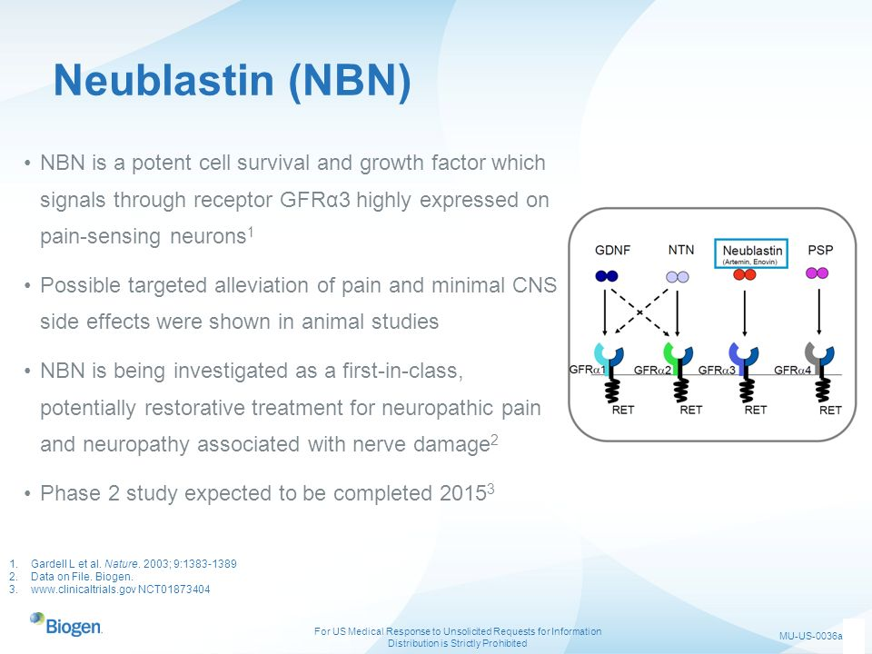 Neublastin (NBN) NBN is a potent cell survival and growth factor which signals through receptor GFRα3 highly expressed on pain-sensing neurons1.