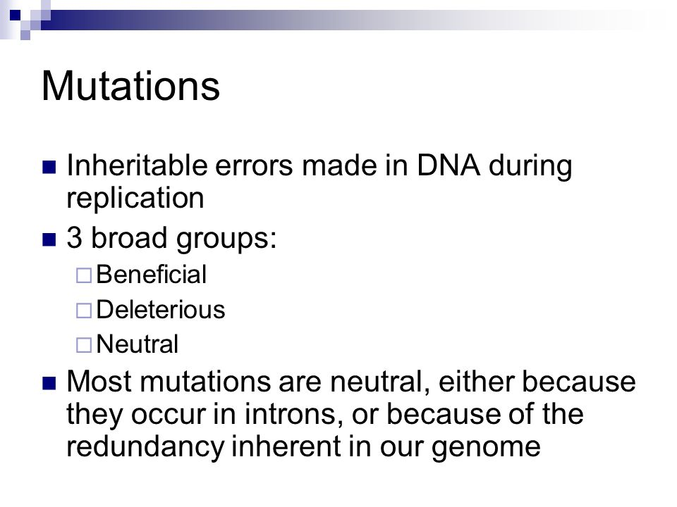 Genetic Mutations Good Bad Or Neutral Ppt Video Online Download