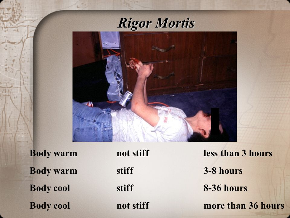 R R Mortis Body Warm Not Stiff Less Than 3 Hours