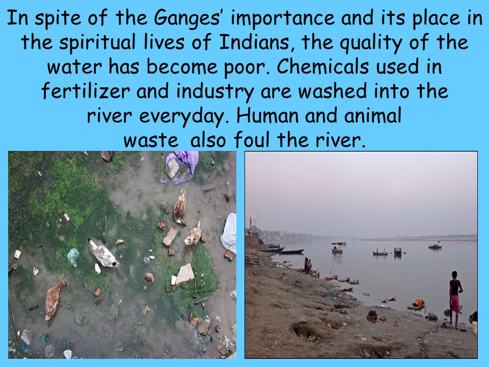 In spite of the Ganges' importance and its place in the spiritual lives of Indians, the quality of the water has become poor.