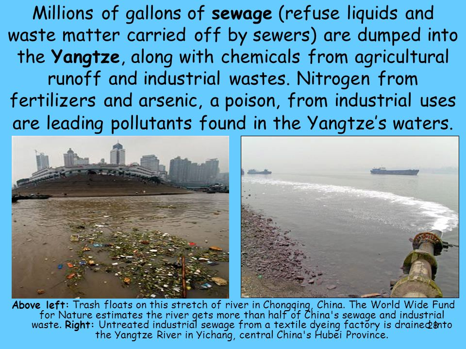 Millions of gallons of sewage (refuse liquids and waste matter carried off by sewers) are dumped into the Yangtze, along with chemicals from agricultural runoff and industrial wastes. Nitrogen from fertilizers and arsenic, a poison, from industrial uses are leading pollutants found in the Yangtze's waters.