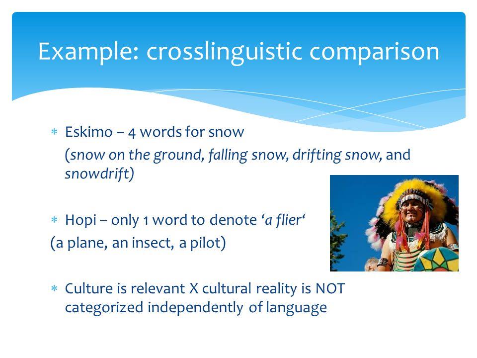 Cultural anthropology | britannica. Com.
