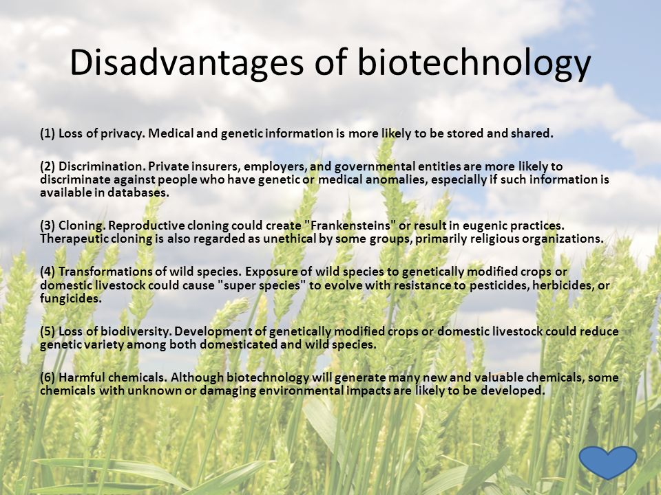 advantages and disadvantages of biotechnology in agriculture