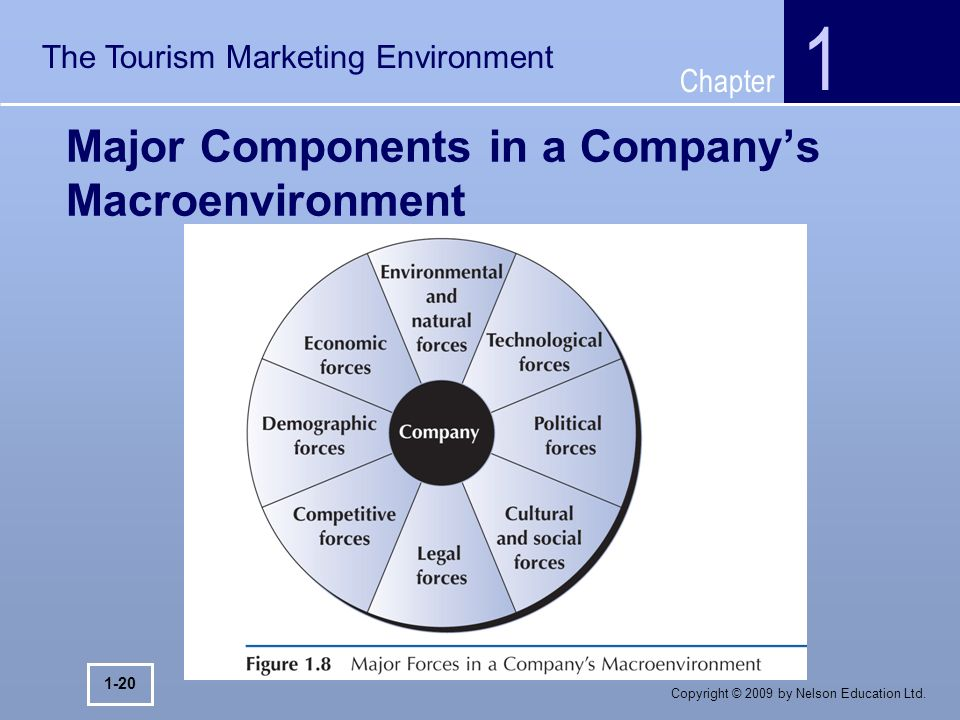 components of a companys macro environment