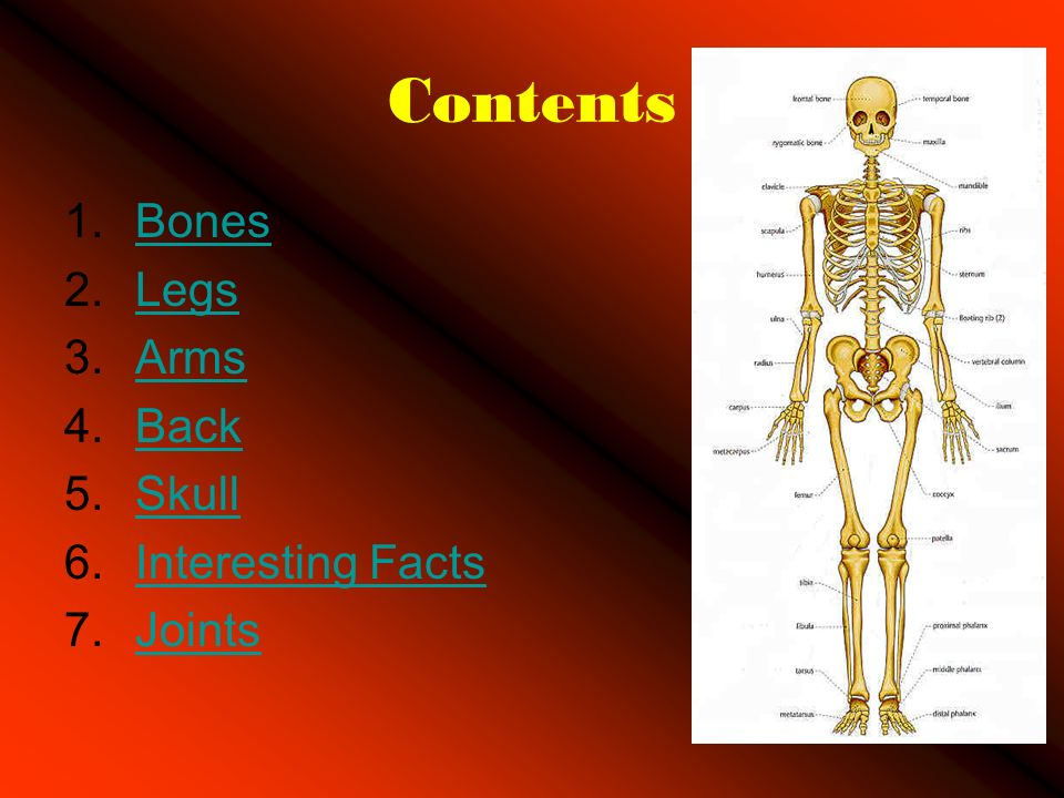 This Is A Power Point About The Human Body Ppt Video Online Download