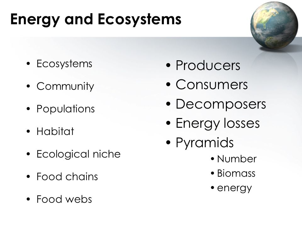 Energy and Ecosystems Producers Consumers Decomposers Energy losses