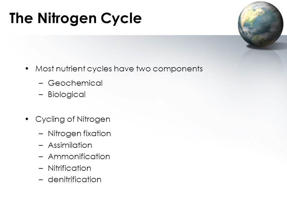The Nitrogen Cycle Most nutrient cycles have two components