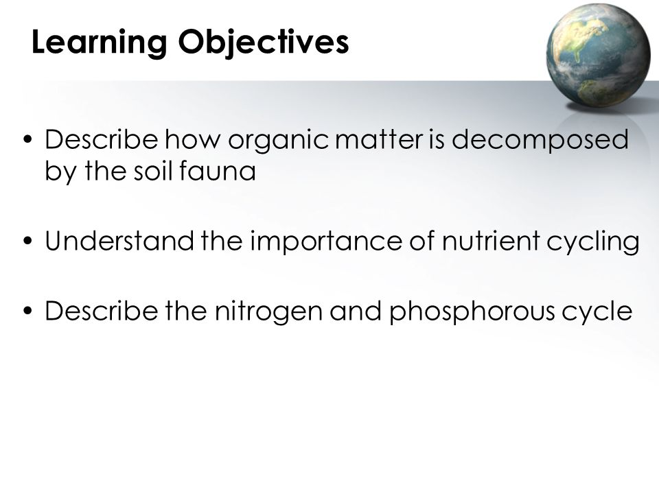 Learning Objectives Describe how organic matter is decomposed by the soil fauna. Understand the importance of nutrient cycling.