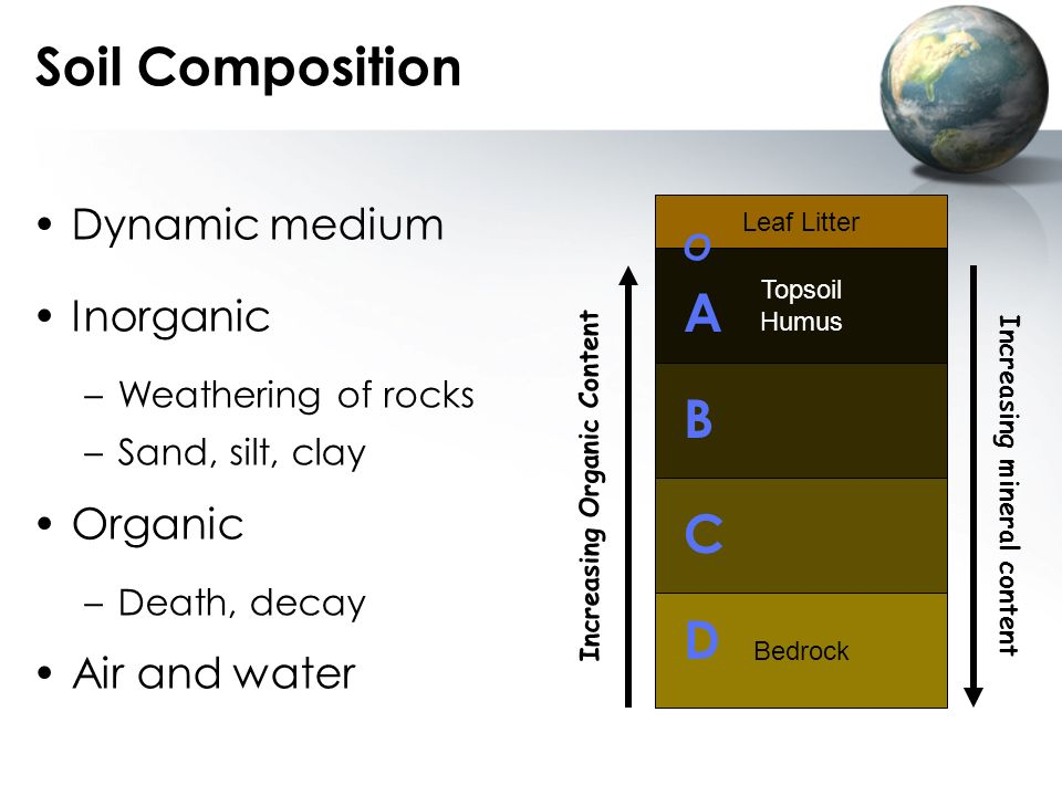 Soil Composition A B C D Dynamic medium Inorganic Organic