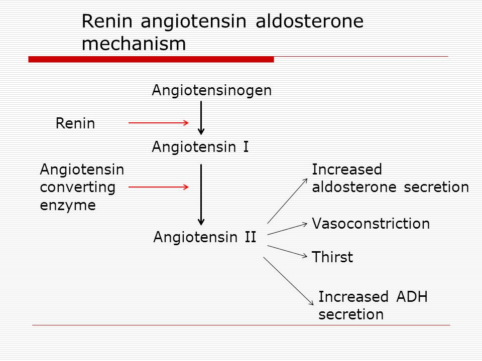 Concept Map Renin Angiotensin Aldosterone Mechanism.Arterial Blood Pressure Ppt Download