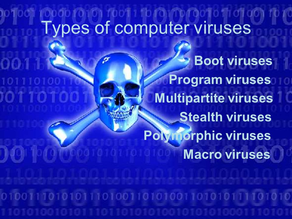 top 20 types of computer viruses names of computer viruses 2018