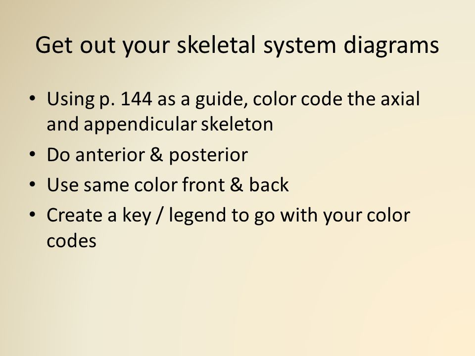 Skeletal System Monday, October 12, ppt video online download
